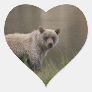 Alaskabobruntbjörn Hjärtformat Klistermärke