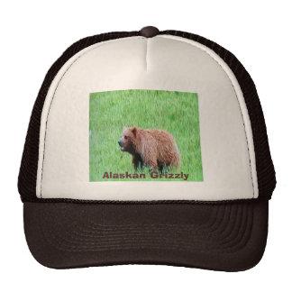 Alaskian-grizzly på ett lastbilsförarelock keps