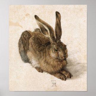 Albrecht Dürer - Junger Hase (den unga haren), 150 Poster