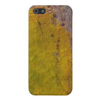 Åldras väggen iPhone 5 skydd