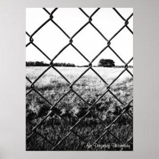 Alex Dergacheff fotografiaffisch Poster
