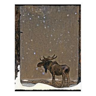 Älg i snö vykort