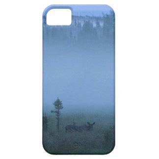 Älg med en dimmig skogenbakgrund iPhone 5 fodral