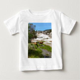 Älg på Mammoth Hot Springs Tee