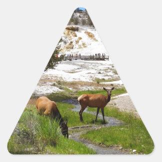Älg på Mammoth Hot Springs Triangelformat Klistermärke