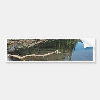 Älg sjö Oregon kaskader Bildekal