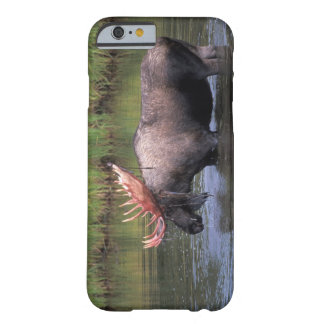älg, tjur i ett kettledamm och matningar på barely there iPhone 6 skal