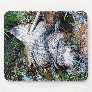 Alligator (Florida, Louisiana och Mississippi) Musmatta