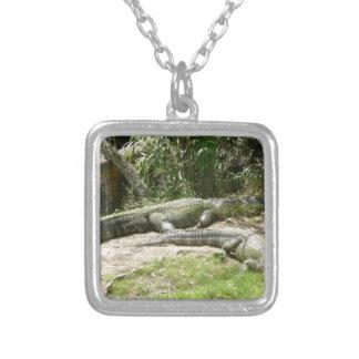 Alligatorgrupp Silverpläterat Halsband