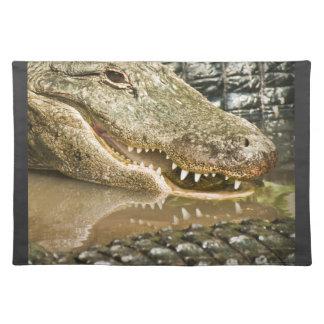 Alligatorvisningtänder i reflexioner bordstablett