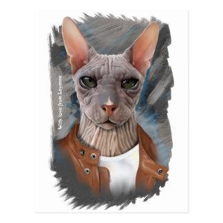 Allvarlig sphinx vykort