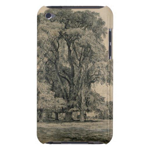Almträd i gammala Hall parkerar, östliga Bergholt, iPod Case-Mate Fodral
