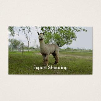 Alpacaklippning Visitkort
