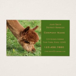 Alpacavisitkort Visitkort
