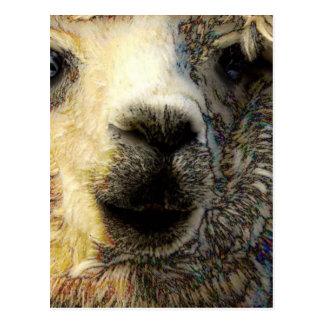 Alpaka grüßt Dich weltweit Vykort
