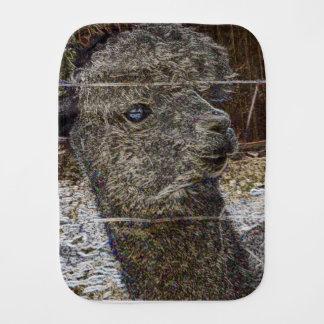 Alpaka Portrait Bebistrasa