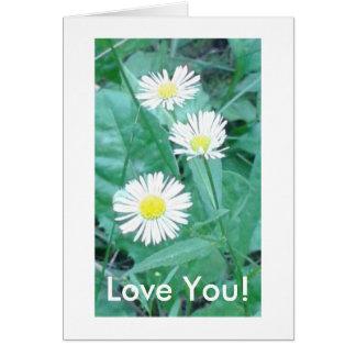 Älska dig! hälsningskort