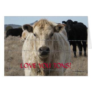 Älska dig Tons, Tons av westernt nötkreatur - Hälsningskort