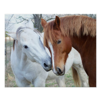 Älska hästar poster