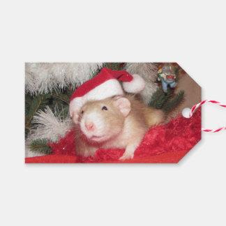 Älsklings- märkre för råttabjörkgåva presentetikett