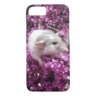 Älsklings- råtta Rahab i blommar