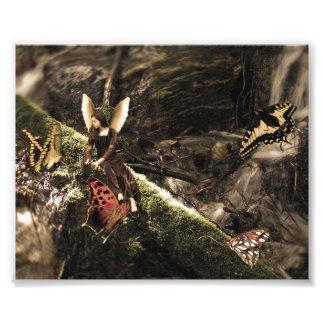 Älskvärd fjärilsnaturfe fototryck