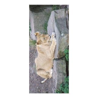 Älskvärd Lionessbokmärken Reklamkort