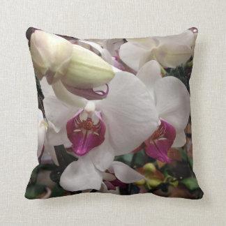 Älskvärda Orchidblommor Kudde