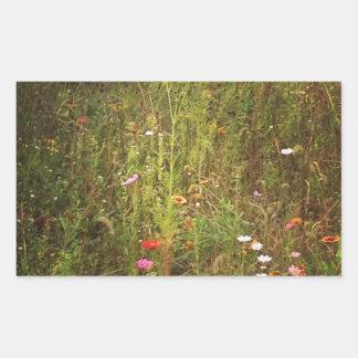 Älskvärda vildblommor rektangulärt klistermärke