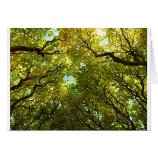 Älskvärt guld- trädkort OBS kort