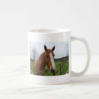 Älskvärt inkvartera hästen kaffe kopp