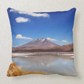 Altiplano landskap med vulkan i Bolivia Kudde
