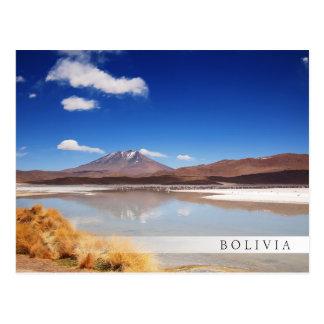 Altiplano landskap med vulkan i Bolivia Vykort