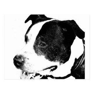 american-staffordshire-terrier-art.png vykort