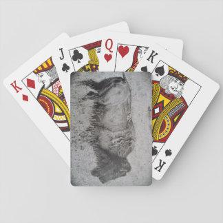 AmerikanBison som leker kort Spelkort