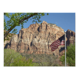 Amerikanska flaggan i den Zion nationalparken mig Fototryck
