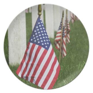 Amerikanska flaggan på gravar av amerikanveteran p tallrik