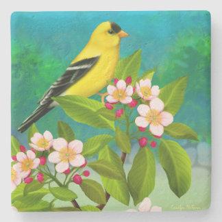 Amerikansteglitsfågel i Apple blommarkustfartyg Stenglasunderlägg