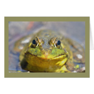 Amfibisk Bullfrog Hälsningskort