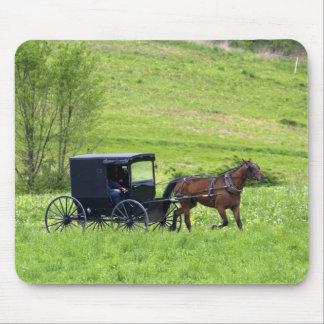 Amish häst och buggy nära Berlin, Ohio. Musmatta