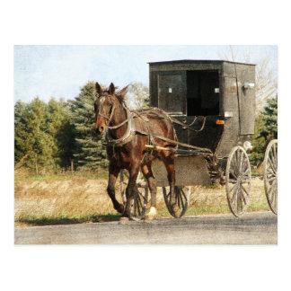 Amish häst och Buggy Vykort