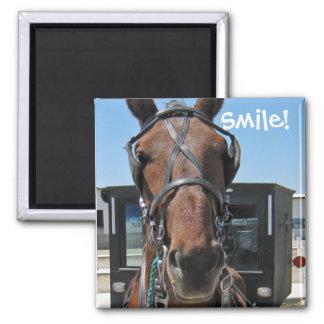 Amish leende; nolla) magnet