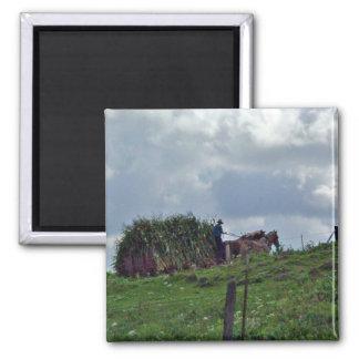 Amish skörd magnet