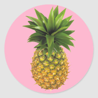 Ananas Runt Klistermärke