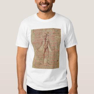 Anatomi av människokroppen t-shirts