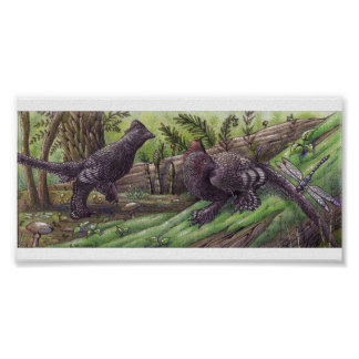 Anchiornis: Dimorphismtryck Poster