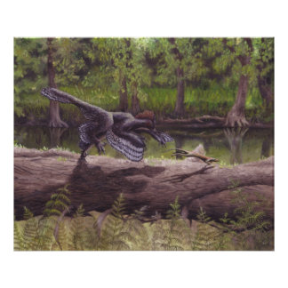 Anchiornis tryck