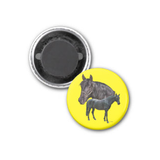 Andalusian häst magnet