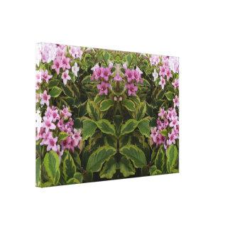 Ande av spegeln välskötta rosa Bush för växt 741 Canvastryck