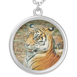 Ande av tigern silverpläterat halsband